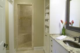 small bathroom designs with shower stall stunning design ideas for small bathroom with shower contemporary