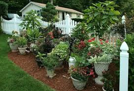 Patio Container Garden Ideas Enjoyable Patio Container Garden Ideas For Your Apartment Continer