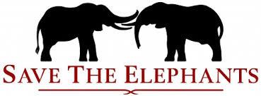 save the save the elephants
