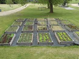 How To Build A Large Raised Garden Bed - raised bed gardening for dragonflies and me