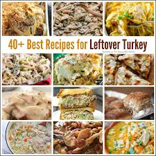 thanksgiving day leftover recipes 40 best recipes for leftover turkey the resourceful mama