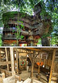 cool tree house cool tree houses slucasdesigns com