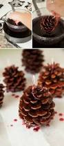 learn how to make your own pinecone fire starters