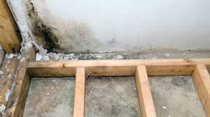 Interior Basement Waterproofing Membrane by Basement Waterproofing Wet Basement Repair Rigidize