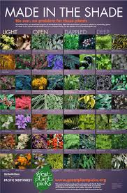 Shade Garden Ideas Free Shaded Patio Plants In Abdcebddbeda Shade Garden Plants