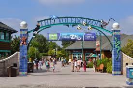 metro detroit mommy the toledo zoo toledozoo