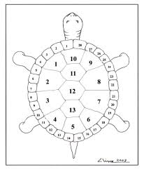 thirteen moons turtle u0027s