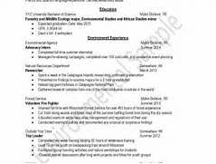 successful resume gallery of most effective resume format exles of successful