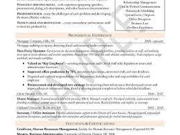 best buy resume examples sales associate retail industry 1410