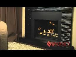 Regency Gas Fireplace Inserts by 98 Best Fireplace Inserts Stove Doors Screens Etc Images On