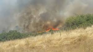 Wildfire Honey by Wildfire Burns 10 12 Acres In Calaveras County One Person Injured