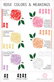 what each color means importance of rose day happy rose day 2017 importance of each rose