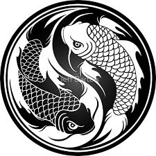 black and white yin yang koi fish stickers by jeff bartels