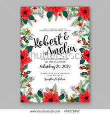christmas flowers stock images royalty free images u0026 vectors