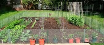 garden topics guide to a successful vegetable garden reilly u0027s