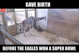 Philadelphia Eagle Memes - gave birth live o 517k onfl memes before the eagles won a super