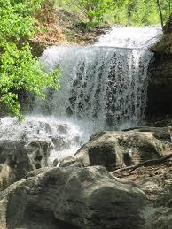 backyard excursions the tanyard creek nature trail