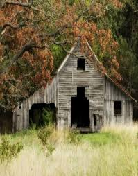 Old Barn Photos 23 Best Old Barns Images On Pinterest Country Barns Country