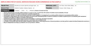 Sample Social Service Resume by Director Of Social Services Resume Sample