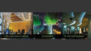 led eco lighting lighting stores 260 prospect rd prospect
