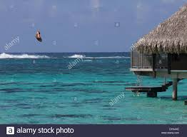 kite sailer surfing by overwater bungalows in moorea island in