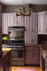 Purple Kitchens by 75 Best Lew U0027s Hardware Brushed Brass Knobs Bars U0026 Pulls Images