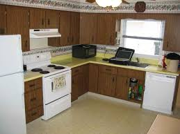 cheapest kitchen cabinet kitchen cabinets awesome remodels design and stunning