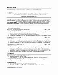 basic resume outlines google wedding spreadsheet google docs new google doc resume templates