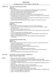 web developer resume junior web developer resume sles velvet