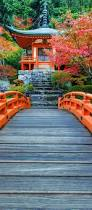 Autumn Colors Best 25 Autumn Scenery Ideas On Pinterest Fall Scenery Pictures