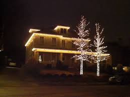 white outdoor christmas trees with lights christmas lights