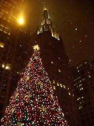 German Christmas Decorations Sydney by 108 Best Christmas Images On Pinterest Christmas Decorations