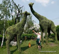 Yew Topiary - coolfunclub topiary art