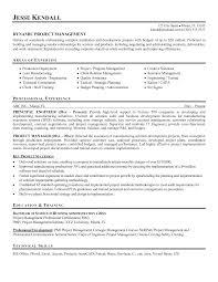 sample resume for concierge position elegant project management