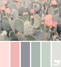 a door hues colour images cacti and combination colors