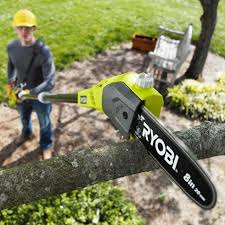 everything you need to about cordless pole saws techiedrive