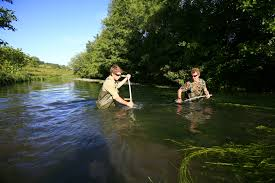 rivers images Uk rivers and chalk streams wwf jpg