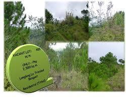 500 Sqm La Trinidad Benguet Dream Realty Engagement Appraisal