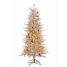 christmas trees sam u0027s club