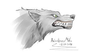 angry wolf sketch by animelionessmika on deviantart