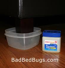 Powder That Kills Bed Bugs Bed Bug Dust Diatomaceous Earth De Is A Natural Solution You