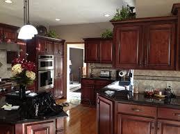 New Kitchen Cabinets Vs Refacing Home Design Ideas Home Design Ideas Part 2