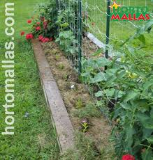 vertical crop netting by hortomallas for maximum harvesting returns