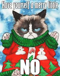 Ugly Cat Meme - grumpy cat s ugly sweater the meme by mistiquestudio on deviantart