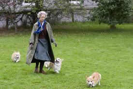 queen elizabeth dog why the queen owns corgis and not great danes we re dog people