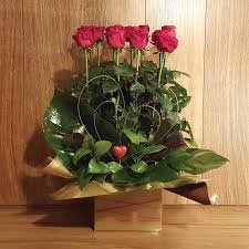 Long Stem Roses Dozen Long Stemmed Red Roses Box Arrangement