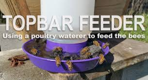topbar hive feeding system using a poultry waterer youtube