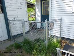 a determined dog cannot be fenced i u0027m not stalking you