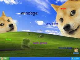 Doge Meme Wallpaper - doge microsoft windows xp bliss wallpaper know your meme