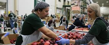 island soup kitchen volunteer greater chicago food depository chicago s food bank